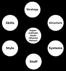 McKinseys 7S Framework